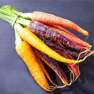Rainbow Carrot Seeds at Seed Bank Ireland